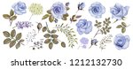botanical collection of blue... | Shutterstock . vector #1212132730