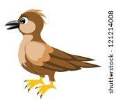 illustration sparrow on white...   Shutterstock . vector #121214008