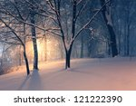 Winter Evening Park And Light...