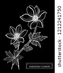 decorative anemone flowers ... | Shutterstock . vector #1212241750