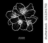 decorative jasmine  flowers ... | Shutterstock . vector #1212241753