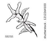 decorative forsythia flowers ... | Shutterstock . vector #1212264103