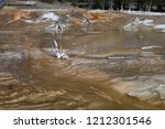 bacteria mat near surprise pool ... | Shutterstock . vector #1212301546