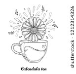 vector drawing of contour cup... | Shutterstock .eps vector #1212314326