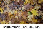 autumn. ground covered with... | Shutterstock . vector #1212360436