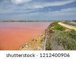 contrast with pink salt pool in ... | Shutterstock . vector #1212400906
