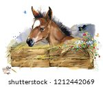 Stock photo farms animal set cute domestic pets watercolor illustration foal illustration little horse 1212442069