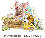 Stock photo farms animal set cute domestic pets watercolor illustration pig puppy dog fox ducklings chick 1212444079