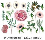 set with botanical elements... | Shutterstock .eps vector #1212448510