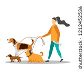 Stock vector dog walker young woman walking with dogs vector illustration 1212452536
