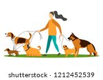 Stock vector dog walker young woman walking with dogs vector illustration 1212452539