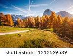 splendid autumn landscape in... | Shutterstock . vector #1212539539