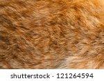 Ginger Fur Background