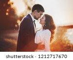 the girl in the green dress ...   Shutterstock . vector #1212717670