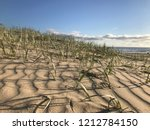 a sand due at the beach in the... | Shutterstock . vector #1212784150
