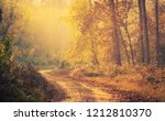 road in the autumn forest | Shutterstock . vector #1212810370