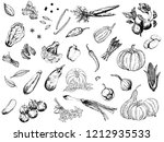 big set of hand drawn sketch... | Shutterstock .eps vector #1212935533
