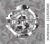trapeze on grey camo pattern | Shutterstock .eps vector #1213025260