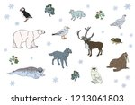 arctic animals set. wolf ... | Shutterstock .eps vector #1213061803