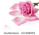 Stock photo gentle pink rose with petals isolated on white background 121308493