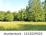 nature  giving peace and... | Shutterstock . vector #1213229323