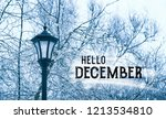 hello december. beautiful... | Shutterstock . vector #1213534810