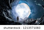 astronaut and space. mixed media   Shutterstock . vector #1213571083