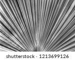beautiful leaf background in... | Shutterstock . vector #1213699126