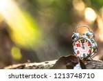 retro alarm clock in the garden ... | Shutterstock . vector #1213748710