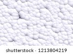 3d rendering picture of white... | Shutterstock . vector #1213804219