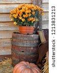 red pumpkin alone and orange... | Shutterstock . vector #1213831213