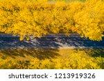 fall. road. autumn travel... | Shutterstock . vector #1213919326