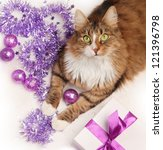 Cat And Violet Christmas...