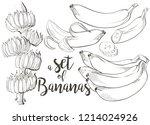 ripe cluster banana peeled... | Shutterstock .eps vector #1214024926