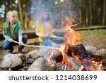 cute little sisters roasting... | Shutterstock . vector #1214038699