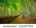 walkway in bamboo forest at... | Shutterstock . vector #1214077093