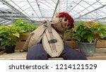 Scarecrow Playing Banjo Amongs...