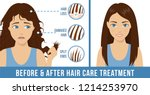 hair care. common problems  ... | Shutterstock .eps vector #1214253970