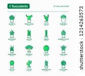 cactus and succulents in pots...   Shutterstock .eps vector #1214263573