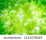 close up view of nature green... | Shutterstock . vector #1214278369