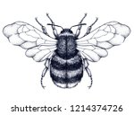 honeybee tattoo. dotwork tattoo.... | Shutterstock .eps vector #1214374726