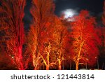 A Group Of Trees Under Orange...