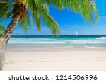 caribbean sunny beach with palm ... | Shutterstock . vector #1214506996