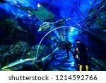 thailand  bangkok   august 30 ... | Shutterstock . vector #1214592766
