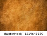 genuine fur surface for... | Shutterstock . vector #1214649130