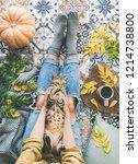 autumn or fall balcony tea time.... | Shutterstock . vector #1214738800