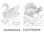 coloring pages collection of... | Shutterstock .eps vector #1214753449