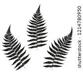three leaf fern silhouettes.... | Shutterstock .eps vector #1214780950
