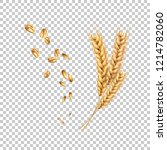 vector wheat ears spikelets... | Shutterstock .eps vector #1214782060