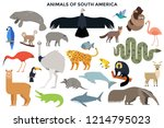 collection of wild jungle and... | Shutterstock .eps vector #1214795023